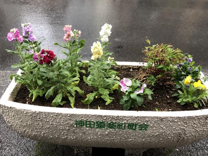 20191130-Sarugakucho-Planter-2